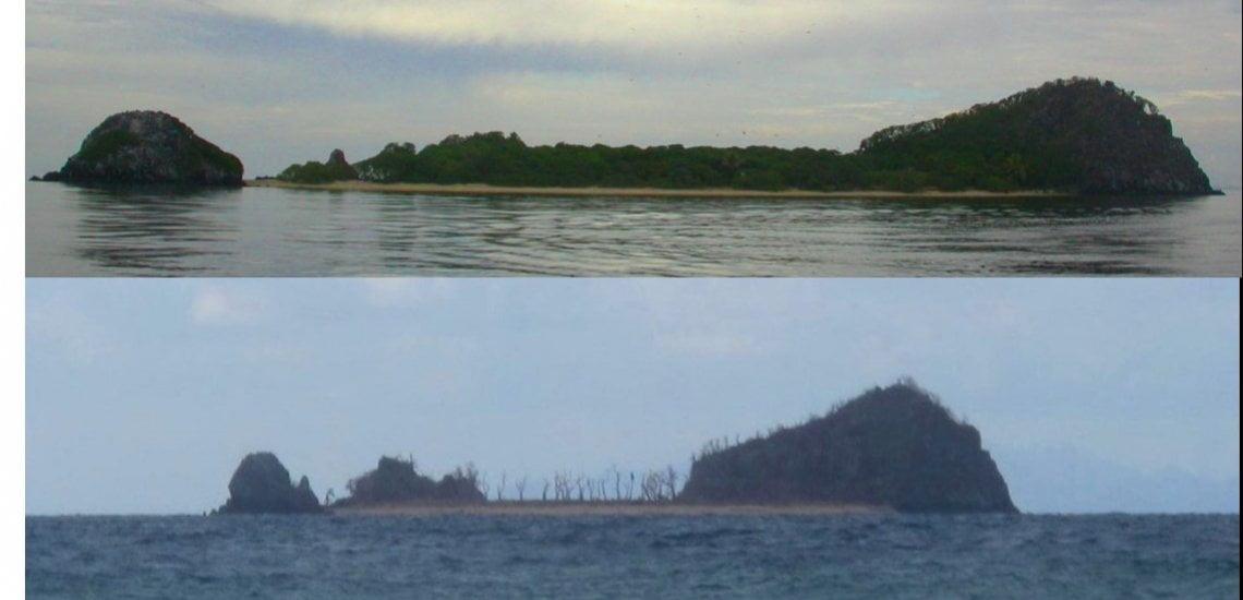 Cyclone Winston decimates 'Bird Island' (Vatu-i-Ra) Important Bird and Biodiversity Area