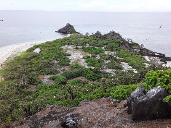 A view of  Vatu-i-Ra Island after Tropical Cyclone Winston ©Birdlife International